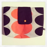 Bag-in-Bag orange Preis: 24€