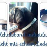 "Halsband ""Lilli Türkis"" Preis: 34€"