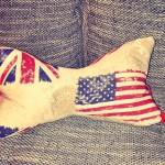 Leseknochen England / USA Preis: 23€