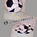 Luftballonhülle 3 Preis: 9,90€